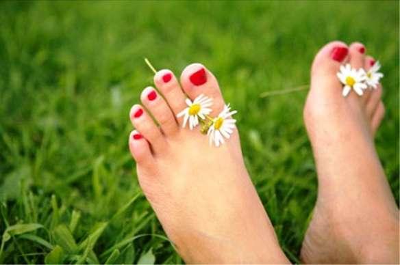 ноги в траве